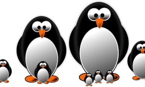 ペンギンリーダーズ