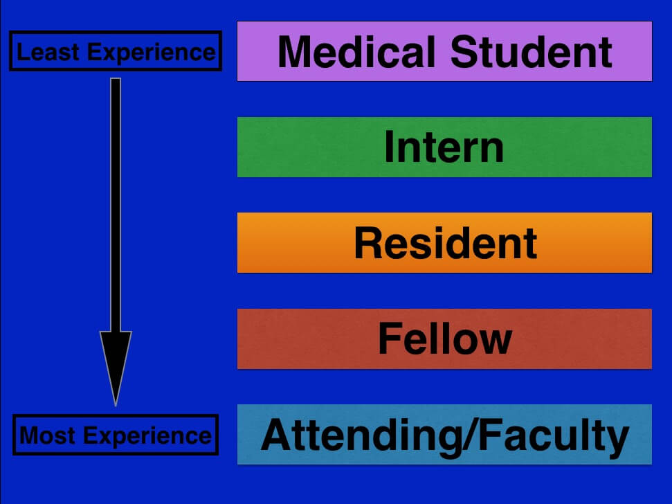 resident, fellow, attending physician
