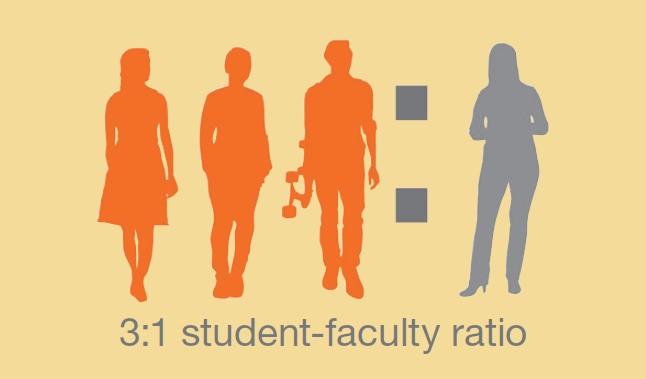 カルテック 教授と学生の比率